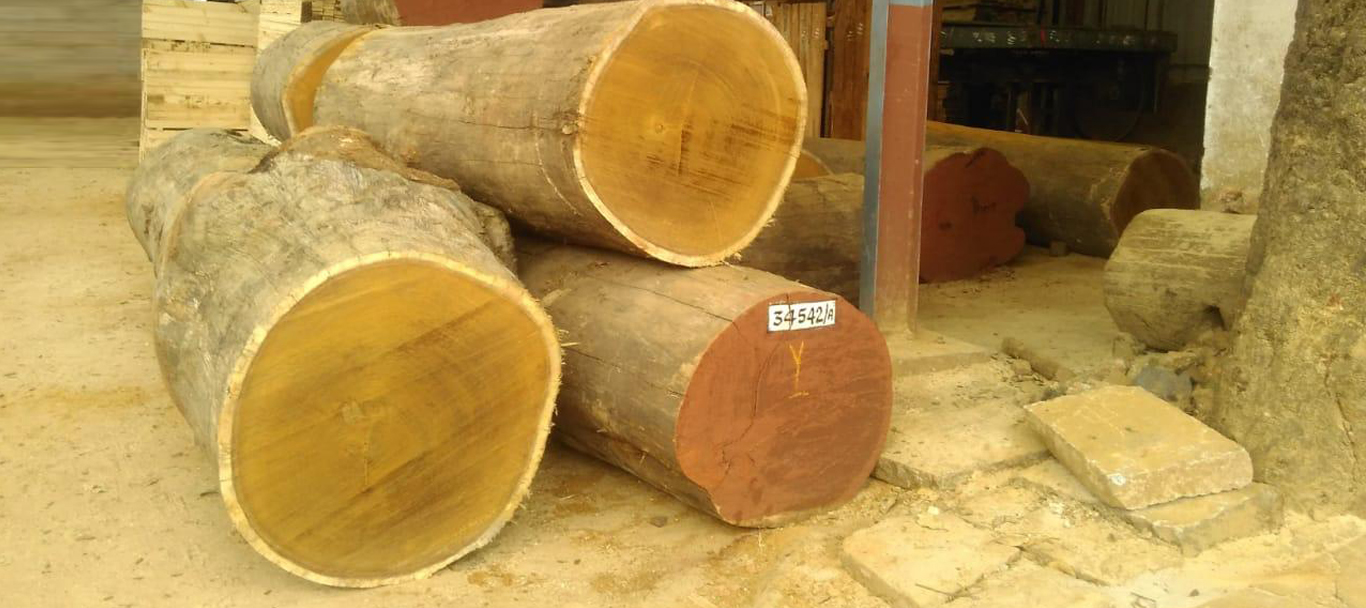 Timber Dealers Plywood Suppliers Wholesalers In Bangalore